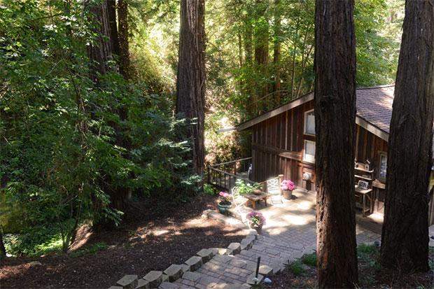 Carmel redwoods cabin